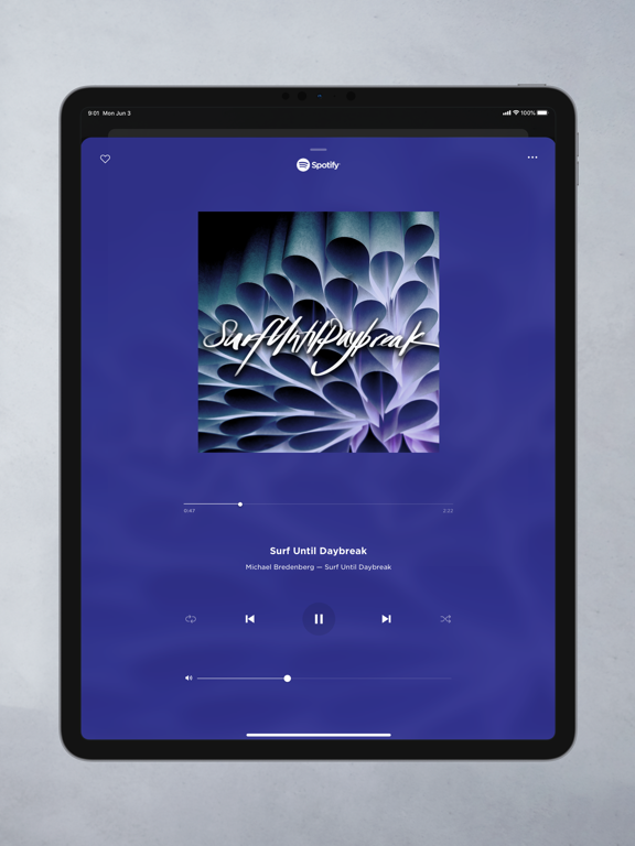 iPad Image of Bose Music