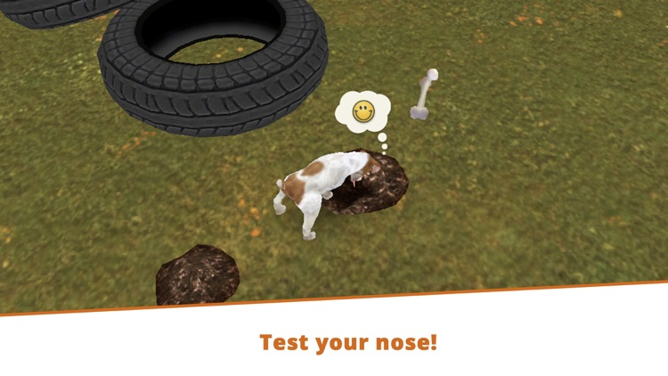 Dog Hotel - Play with dogs screenshot-5