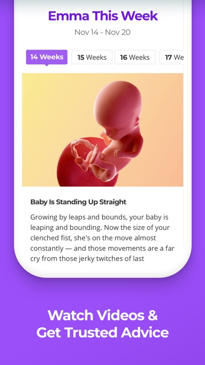 Pregnancy & Baby Tracker WTE screenshot-1