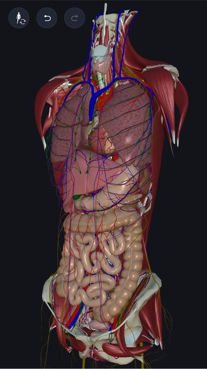 3D anatomy teamLabBody2020 screenshot-0