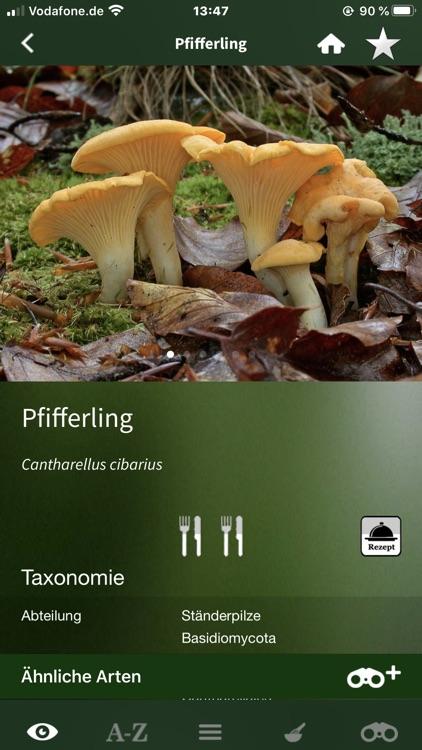 Pilze Sammeln + Bestimmen screenshot-4