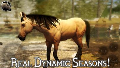 Ultimate Horse Simulator 2 screenshot 2
