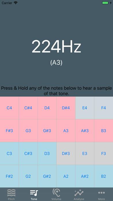 Voice ToolsScreenshot of 3