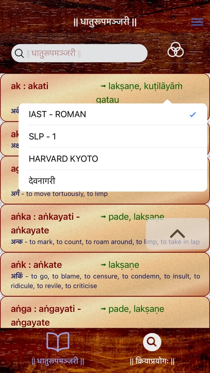 Sanskrit Dhatu 360° screenshot-4
