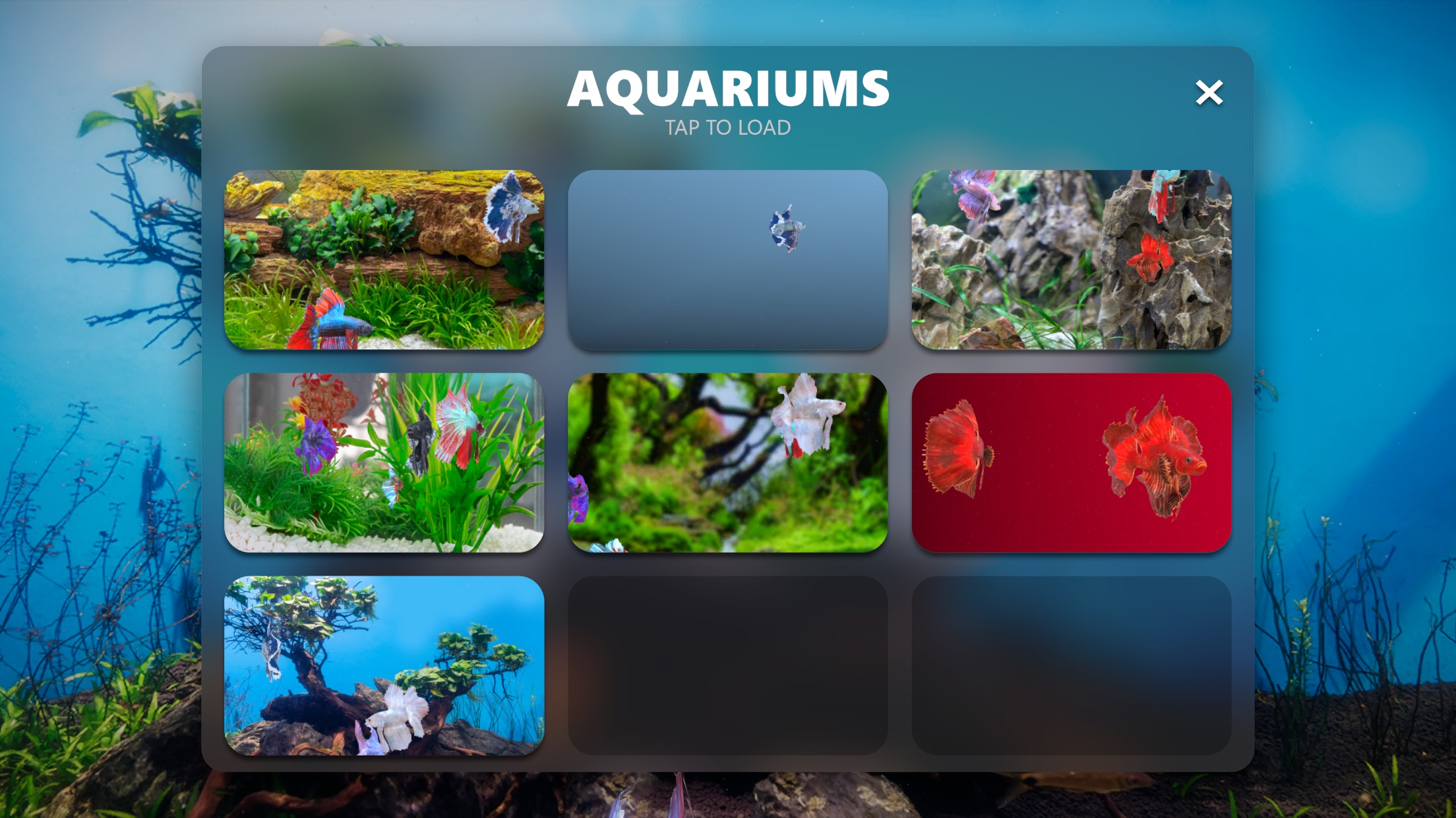 Screenshot do app Betta Fish - Virtual Aquarium