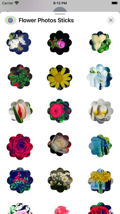 Flower Photo Sticks screenshot-3