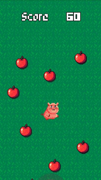 豚とりんご紹介画像1