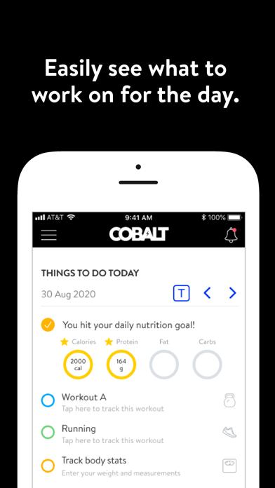 Cobalt+ screenshot 1