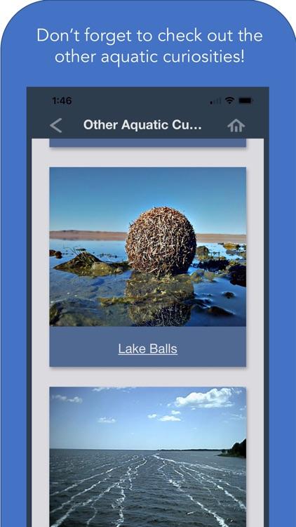 Maine Aquatic Phenomena screenshot-8