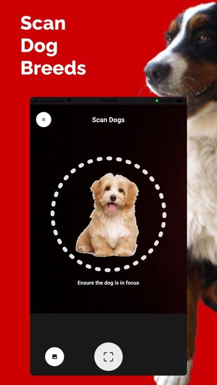 Dog Breed Identifier - Doge screenshot-6