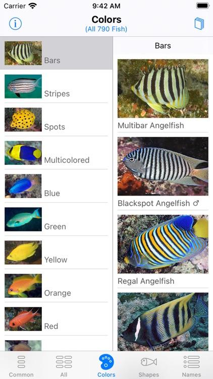 Solomon Islands Fish ID screenshot-3