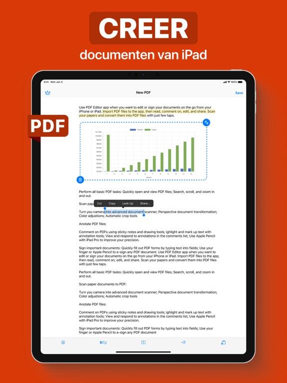 PDF iPad app afbeelding 2