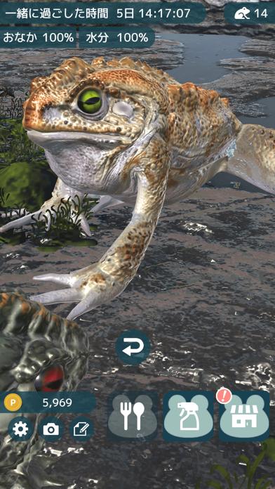 カエルといっしょ - 癒し系放置育成ゲームのおすすめ画像5