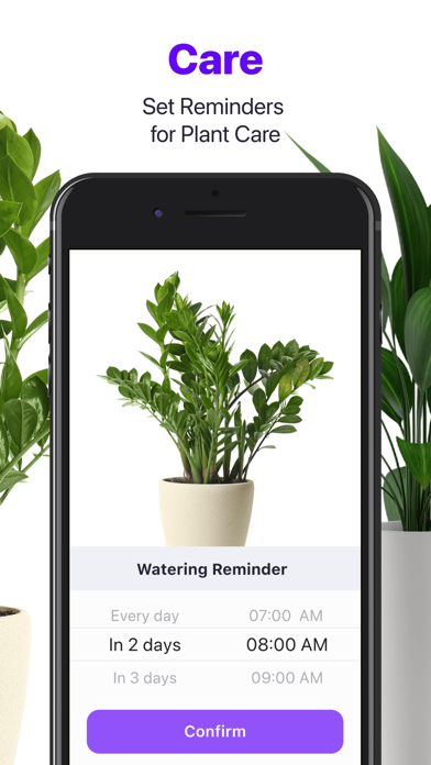 Lily - Plant Identifier screenshot 2