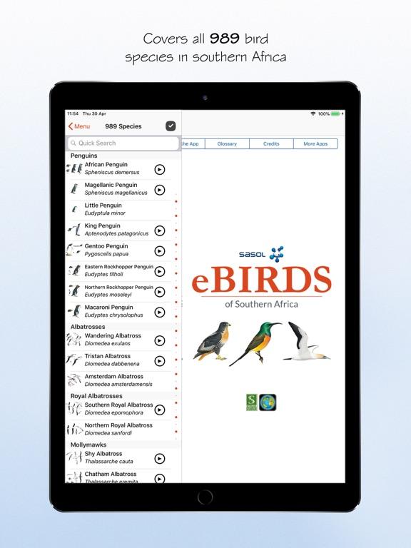 Sasol eBirds 5th Edition screenshot 11