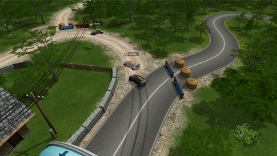 Go Rally screenshot 6