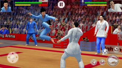 Kung Fu Fight: Karate Fighter Screenshot on iOS