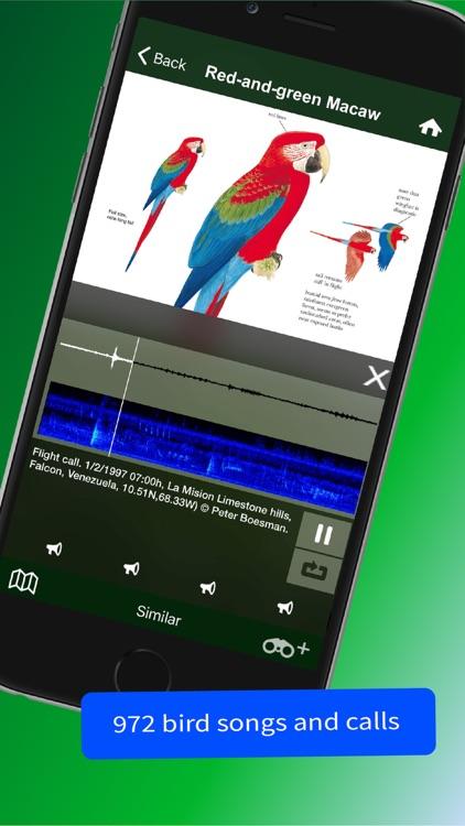 All Birds Trinidad and Tobago screenshot-3