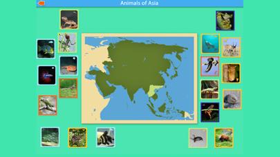 Montessori - Animals of Asia screenshot 5