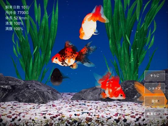 金魚育成アプリ「ポケット金魚」のおすすめ画像1