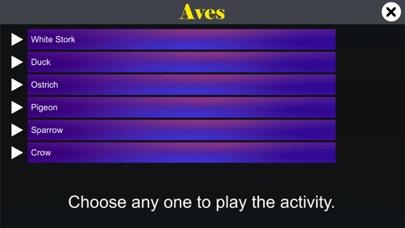 Diversity in Living: Aves screenshot 2