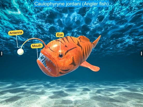 Diversity in Living: Pisces screenshot 14