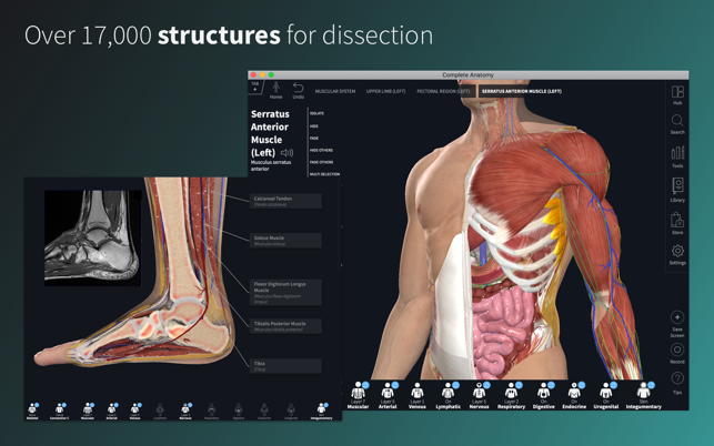 ‎Complete Anatomy 21 Screenshot