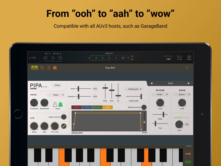 Pipa Vocal Synthesizer