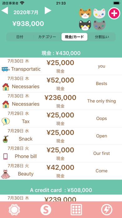 Hinakko Expense Manager ScreenShot2