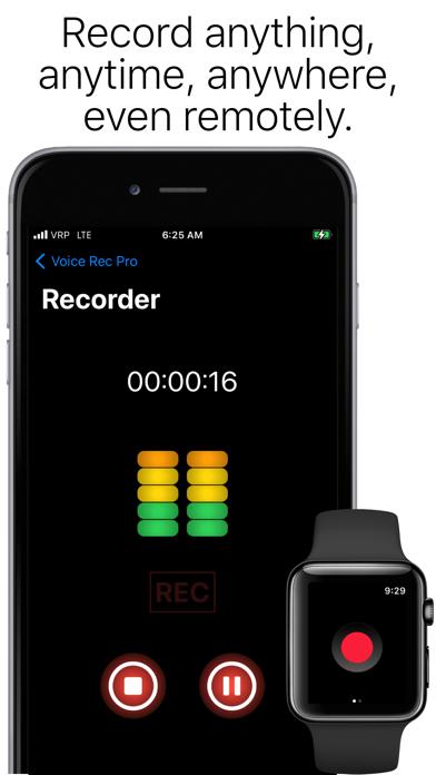 Voice Rec Proのおすすめ画像1