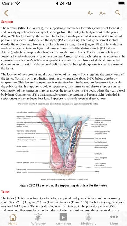 Fundamental Physiology screenshot-3