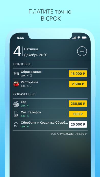 Скриншот №3 к Money Pro - Личные финансы