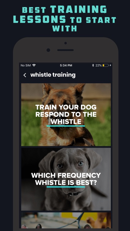 Dog Whistle & Clicker