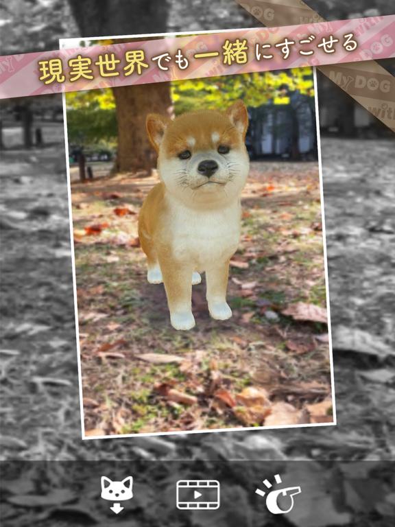 with My DOG - 犬とくらそう -のおすすめ画像10