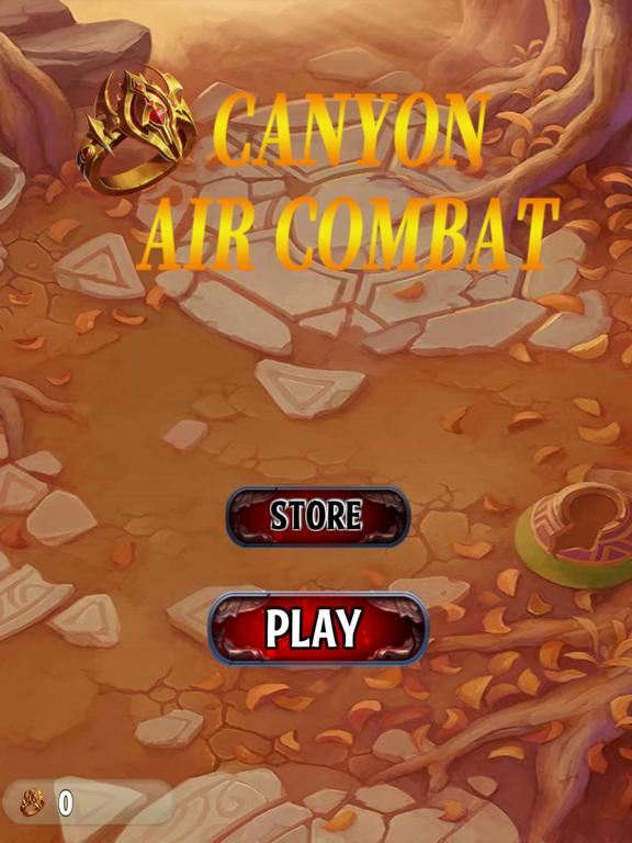 Canyon Air Combat screenshot 4