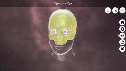 The Eye (Anatomy & Physiology) screenshot 2