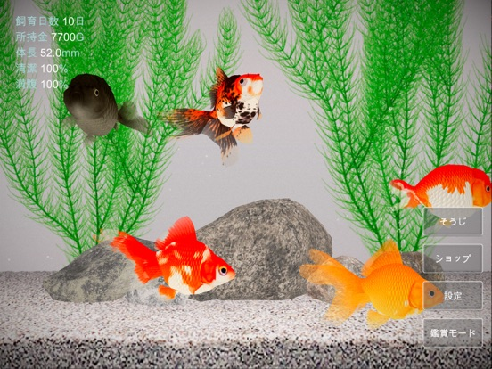 金魚育成アプリ「ポケット金魚」のおすすめ画像2