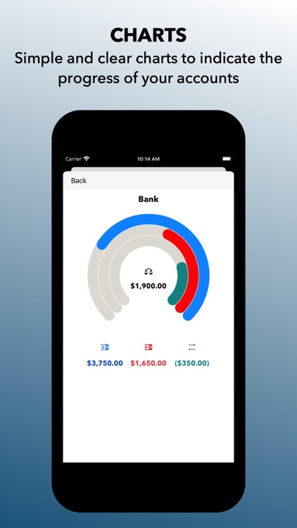 In and Out Essential CashBook