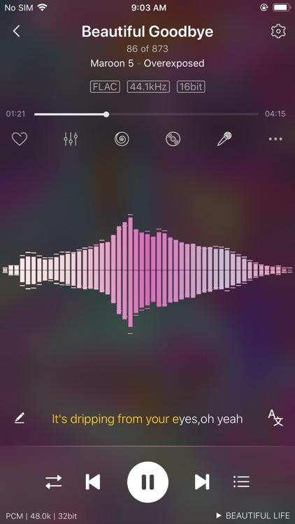 Ever Play - HiFi Music Player screenshot-9