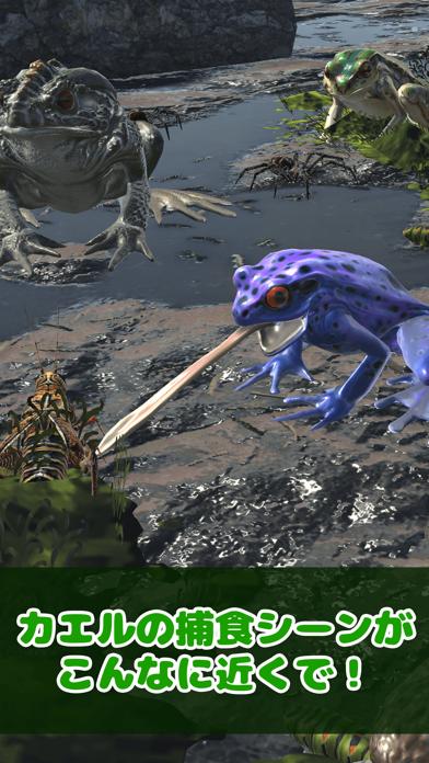 カエルといっしょ - 癒し系放置育成ゲームのおすすめ画像2