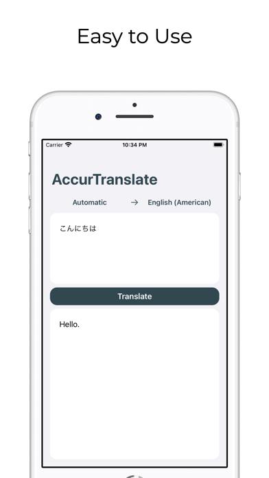 AccurTranslator screenshot 2