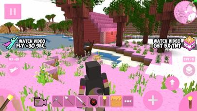 Candy Craft! screenshot 1