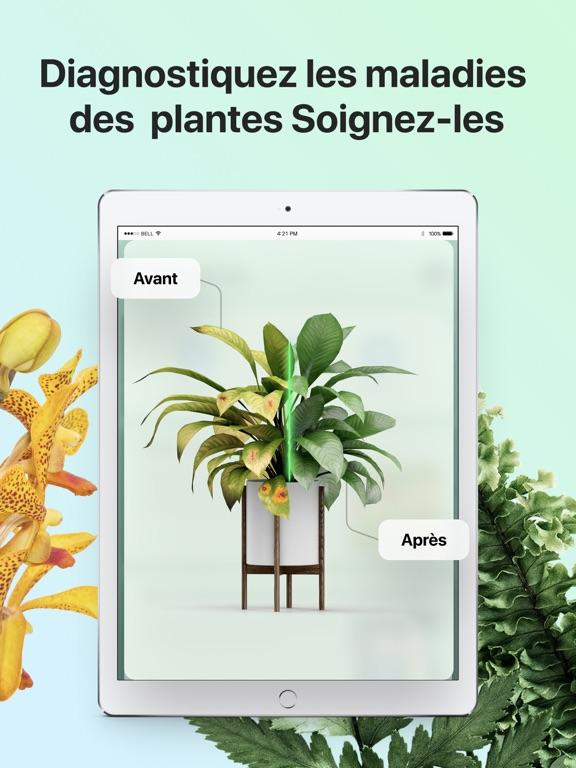PictureThis-Identifier Plantes