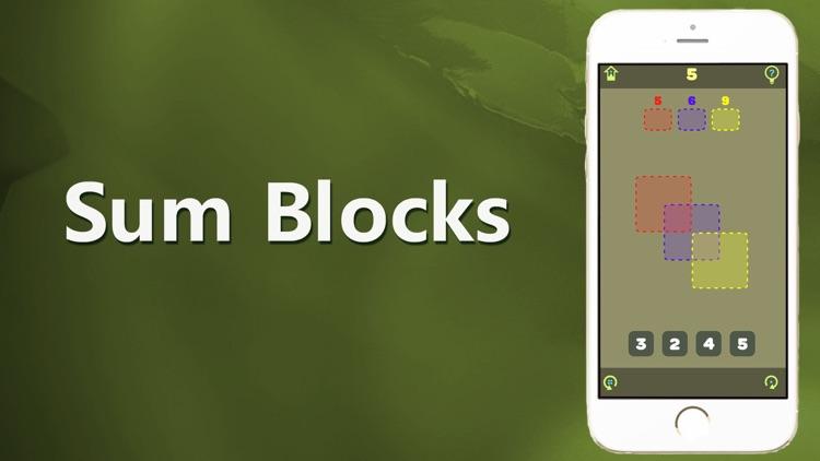 爱游戏-Sum Blocks screenshot-3