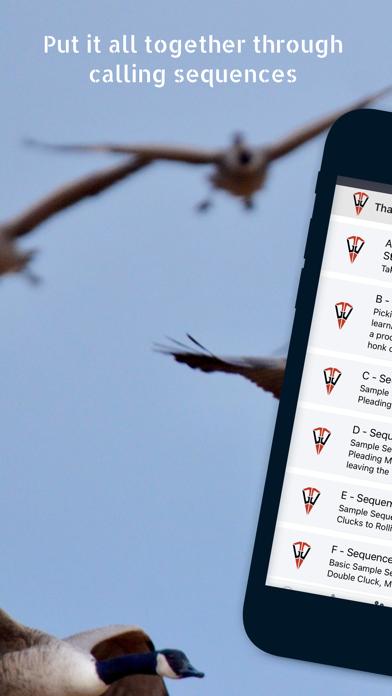 Goose Tech screenshot 4