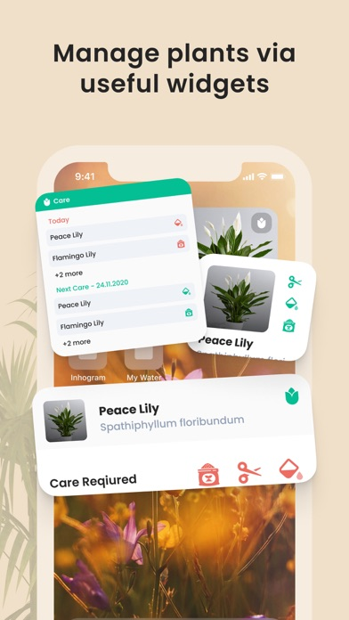 PlantIn: Plant Identifier screenshot 8