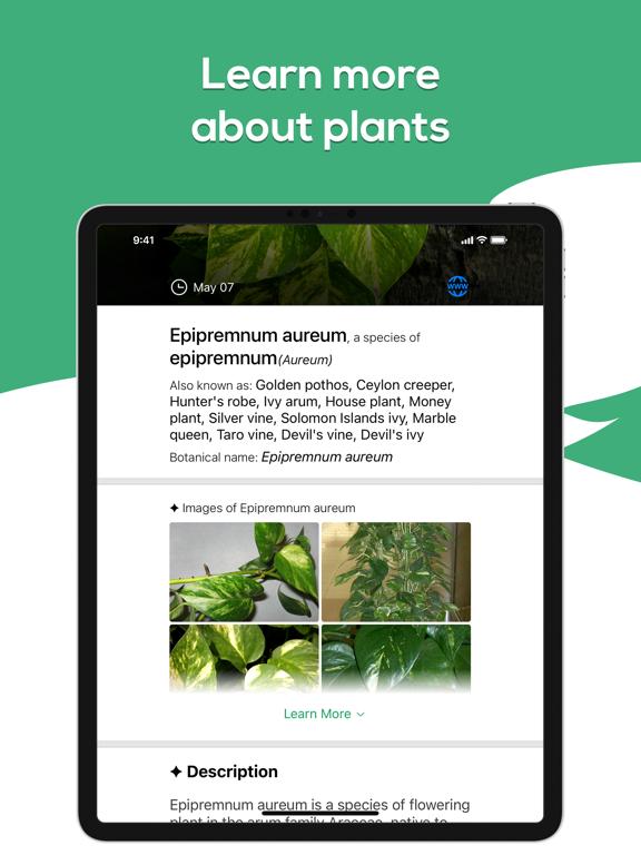 Plant Identifier - WhatPlant screenshot 9