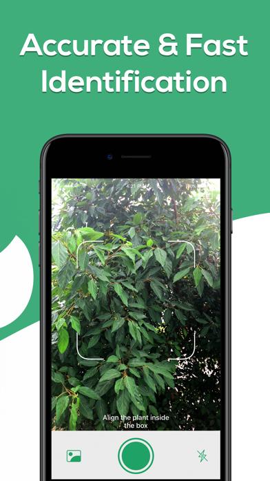 Plant Identifier - WhatPlant screenshot 3