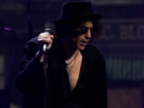 Rollin' and Tumblin' - Peter Wolf
