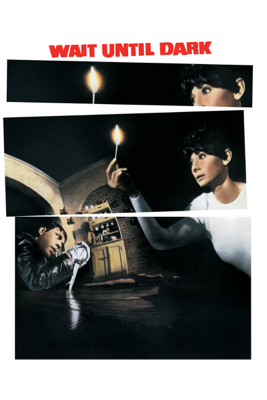 Wait Until Dark (1967) - Terence Young